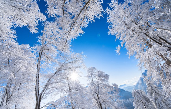 Picture winter, frost, the sky, trees, mountains, Austria, Alps