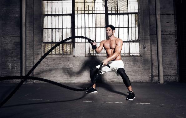 Picture figure, ropes, the gym, training, athlete, Training, crossfit, Tom Ellis, Tom Ellis