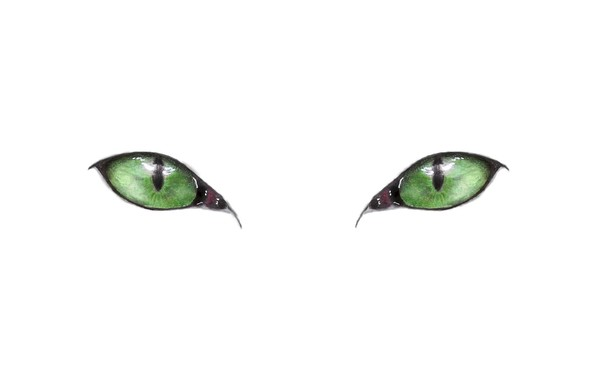Picture green eyes, minimalism, eyes, Cat, artwork, drawing, white background, simple background, pencil drawing