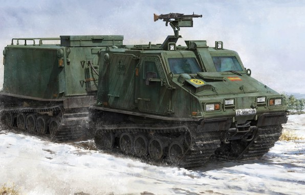 Picture Sweden, armoured cargo vehicle, BV 206 S, Haegglunds, two-section tracked all-terrain vehicle