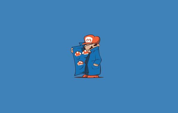 Picture Minimalism, The game, Style, Mushrooms, Mario, Background, Art, Mario, Super Mario