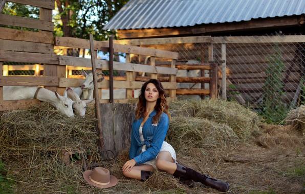 Picture girl, hay, legs, goats, pitchfork, the farm, Eugene Pyatnitskaya