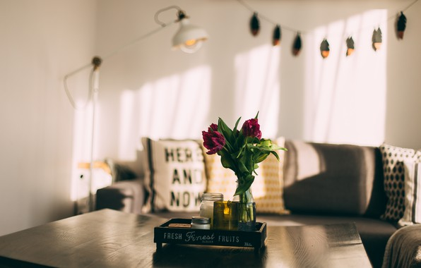 Picture Flower, Photography, Room, Interior
