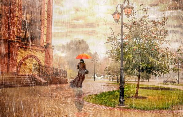 Picture autumn, the city, rain, tree, mood, woman, umbrella, lantern, Rowan