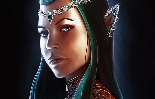 Picture look, art, The Lord Of The Rings, elf