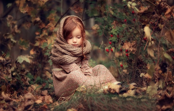 Picture autumn, forest, leaves, nature, berries, Bush, dress, fruit, briar, girl, child, Darya Stepanova, Snood