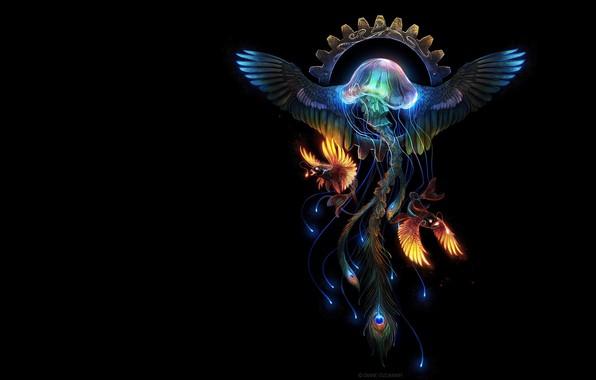 Picture fantasy, fiction, the ocean, pen, fish, Medusa, wheel, fantasy, art, Diane ÖZDAMAR, Kriva, Abyssal Phoenix