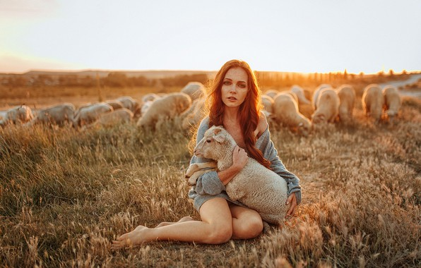 Picture field, animals, the sky, look, girl, the sun, nature, pose, model, sheep, barefoot, makeup, hairstyle, …