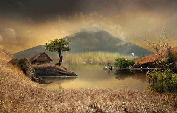 Picture grass, trees, landscape, birds, nature, pond, the reeds, graphics, mountain, house, digital art, herons