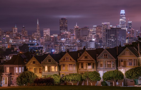 Picture trees, building, home, CA, San Francisco, night city, skyscrapers, California, San Francisco