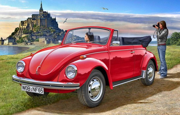 Picture Girl, Volkswagen, Seagulls, Male, 1970, Beetle, Cabriolet
