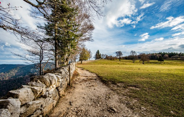 Picture field, forest, the sky, grass, clouds, trees, mountains, stones, wall, Switzerland, Switzerland, depression, Creux du …