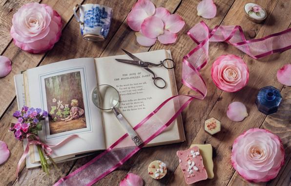 Picture flowers, style, petals, mug, tape, book, magnifier, a bunch, scissors, Camellia