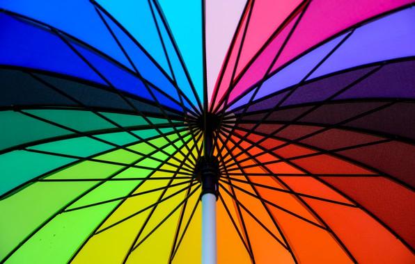 Picture background, color, rainbow, colors, umbrella, colorful, rainbow, umbrella, bright
