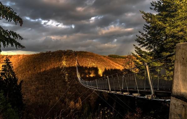 Picture bridge, nature, morning