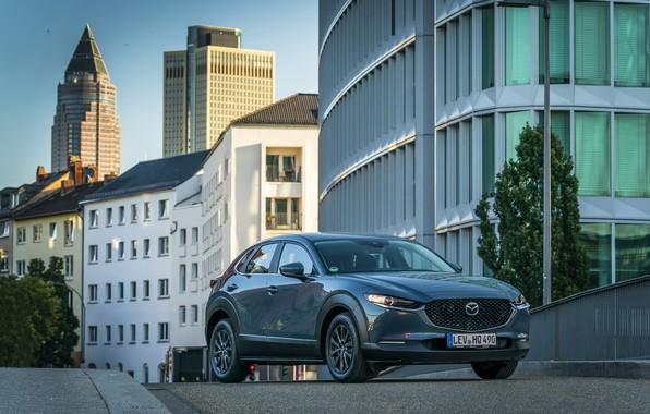 Picture Mazda, Worldwide, 2019, CX-30