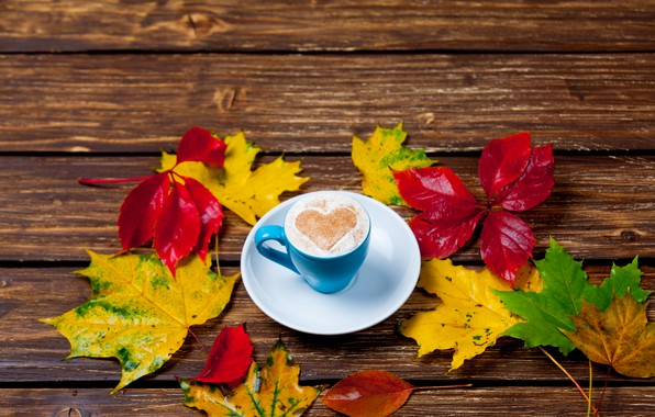 Picture leaves, heart, colorful, heart, wood, autumn, leaves, cup, romantic, coffee, a Cup of coffee