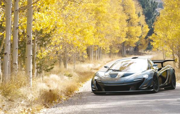 Picture Cars, Auto, Mclaren P1