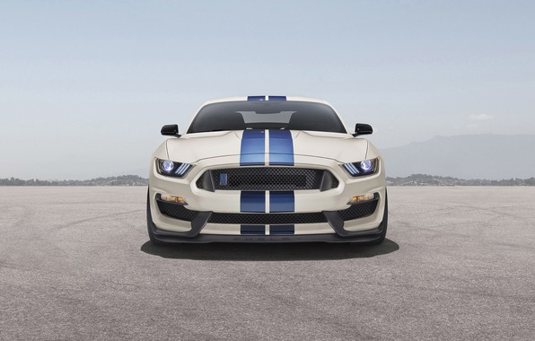 Picture Mustang, Shelby, ford, Ford Mustang Shelby GT350, gt350