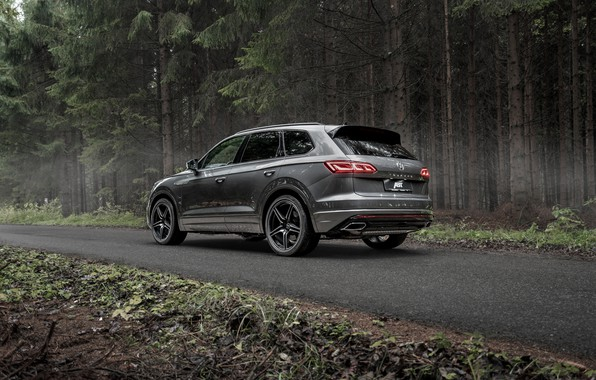 Picture TDI, Volkswagen, rear view, Touareg, crossover, ABBOT, R-Line, V8, 2019