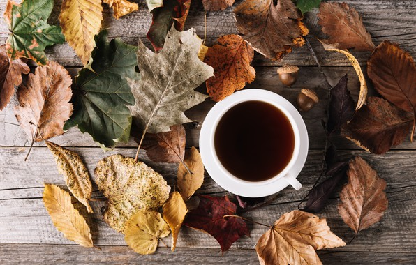 Picture autumn, leaves, coffee, Cup, wood, autumn, leaves, cup, romantic, coffee, autumn