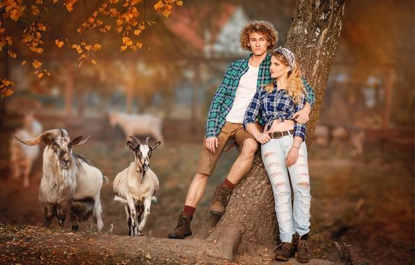 Picture autumn, girl, guy, goat, bokeh, goats, couples, goat, Yaroslav Gromov