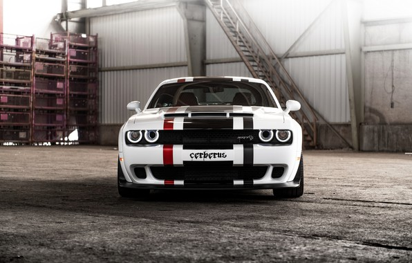 Picture white, Dodge, Challenger, front view, GeigerCars, 2019, SRT Hellcat Cerberus