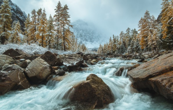 Picture autumn, snow, trees, landscape, mountains, nature, fog, river, stones, stream, Altay, Siberia, Rev Alex