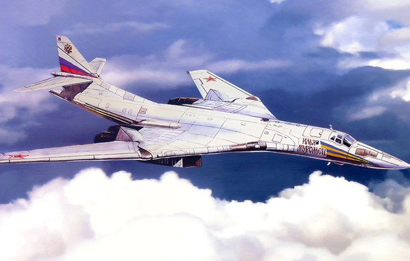 Picture Swan, The plane, USSR, Russia, Painting, Aviation, BBC, Bomber, Tu 160, The plane, The Tu-160, ...