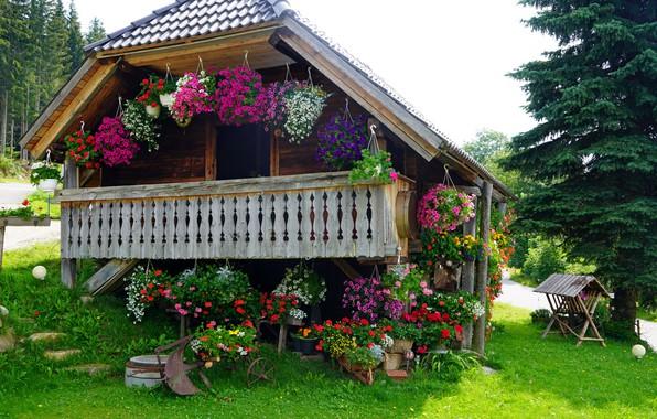 Picture cottage, veranda, in colors