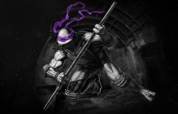 Picture Ninja, Teenage mutant ninja turtles, TMNT, Donatello, Donatello, Teenage Mutant Ninja Turtles, Turtles, Concept Art, …