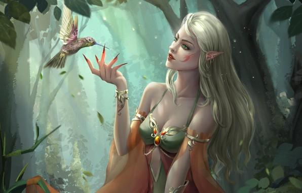 Picture forest, look, fantasy, art, profile, elf, bird