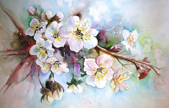 Picture figure, picture, watercolor, painting, Apple blossoms, spring flowers, unknown author
