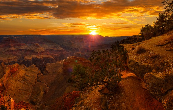 Picture the sky, the sun, clouds, rays, trees, stones, rocks, dawn, horizon, canyon, panorama, USA, the ...