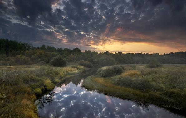 Picture autumn, the sky, landscape, clouds, nature, dawn, morning, grass, forest, Bank, Arkhangelsk, river, Puja