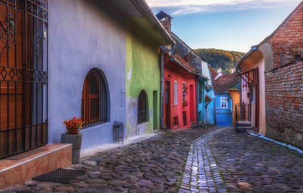 Picture the city, home, bridge, street, Romania, Transylvania, Sighisoara