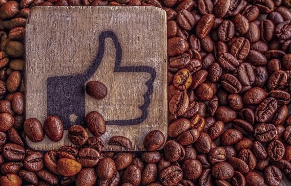 Picture coffee, grain, plate