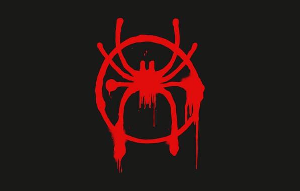 Picture spider-man, spider-man, logo, symbol, emblem, logo, symbol, Spider-Man: Into the Spider-Verse, through the universe