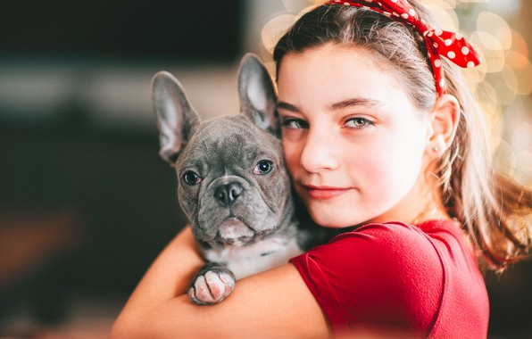 Picture look, face, portrait, dog, girl, puppy, face, friends, doggie, French bulldog
