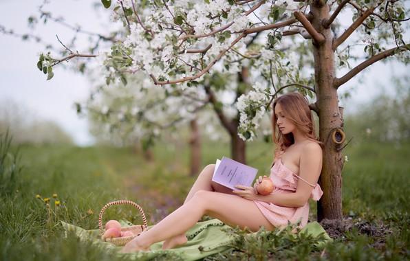 Picture apples, Girl, Ilya Garbuzov, Anastasia Abramova