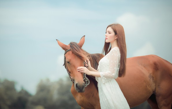 Picture the sky, look, face, girl, nature, face, mood, horse, horse, friendship, brown hair, Asian, white …