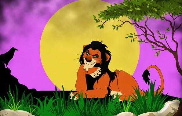 Picture Leo, art, scar, picture