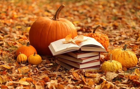 Picture autumn, leaves, books, harvest, pumpkin, yellow, autumn, leaves, pumpkin, books, harvest