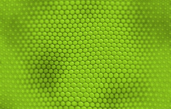 Picture texture, green, cell