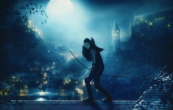 Picture roof, girl, trees, night, lights, the moon, home, bow, Archer, fantasy, art, elf, arrows, locks, …