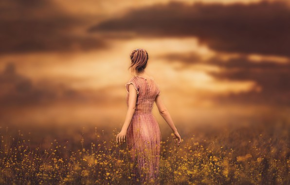 Picture the sky, girl, sunset, flowers, dress, meadow