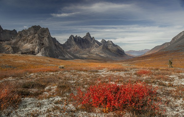 Picture autumn, landscape, mountains, nature, vegetation, valley, Canada, Yukon
