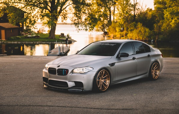 Picture BMW, Green, Water, F10, Silver, Sight