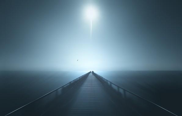 Picture sea, Seagull, The moon, horizon, pierce, moon, sea, pier, horizon, seagull, Marc Huybrighs