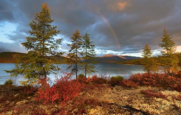 Picture autumn, trees, mountains, lake, rainbow, Russia, Magadan oblast, The Lake Of Jack London
